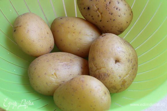 Сварим картофель в мундире.