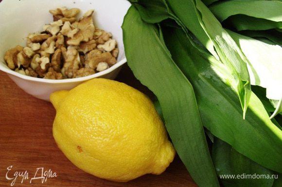 Зелень измельчаем, орехи мелко рубим ножом. В блендер отправляем все ингредиенты и взбиваем в однородную массу.