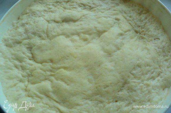 Муку просеять и смешать с солью и дрожжами. Картофельное пюре соединить с картофельным отваром, добавить сахар, перемешать. Добавить муку и замесить мягкое тесто. Накрыть миску полотенцем и оставить тесто на 20 минут. Вымесить тесто еще раз, добавив растительное масло. Дать подняться вдвое.