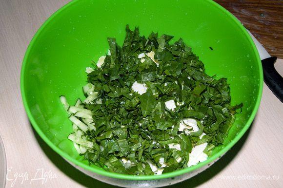 Листья одуванчиков вынуть из воды и порезать в салат. Заправить салат сметаной и майонезем. Приятного аппетита!