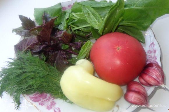 Тщательно промыть всю зелень и овощи, помидоры и болгарский перец порезать на кусочки. Чеснок почистить.
