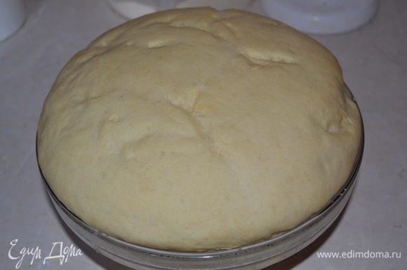 Накрываем тесто полотенцем, ставим в теплое место подходить. Тесто должно увеличиться в 3 раза примерно. У меня тесто довольно быстро подросло, за 1-1,5 часа.
