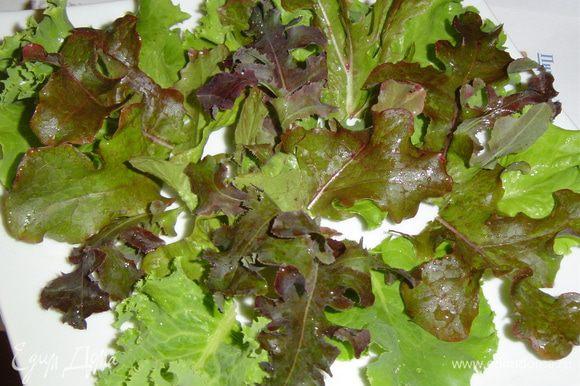 Пока котлетки обжариваются берем большую плоскую тарелку и на нее выкладываем промытые листья салата,