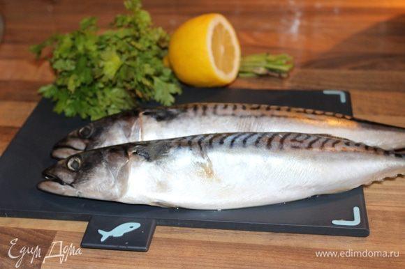 Скумбрию выпотрошить, удалить жабры, хорошо промыть и просушить салфеткой. Рыбу натереть солью и перцем.