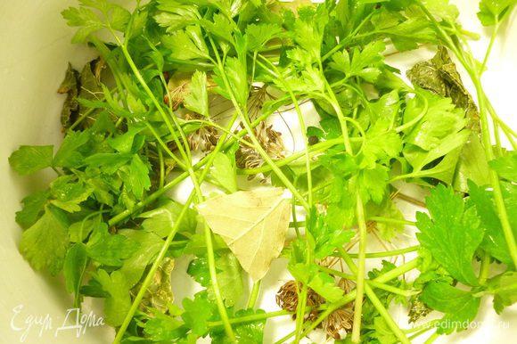 На дно кастрюли выкладываем веточки петрушки, укропа,сельдерея, 2-3 лавровых листика, несколько горошин черного перца, листик хрена.
