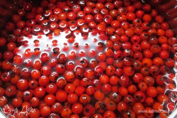 Воду сливаем, ягоды промываем. Отправляем рябину в кастрюльку, заливаем литром воды, на сильном огне доводим до кипения.