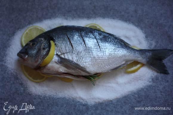 """Один ломтик разрежем пополам и засунем их под жабры. Выложим рыбу на """"подушку"""". Отправим в разогретую до 120-130 г духовку на 30-40 минут."""