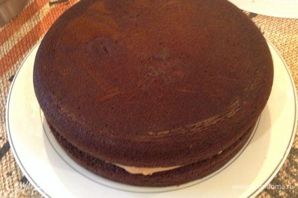 Намазать 1/2 часть крема на нижний корж и собрать торт. Обмазать весь торт второй частью. Посыпать остатками лепестков.