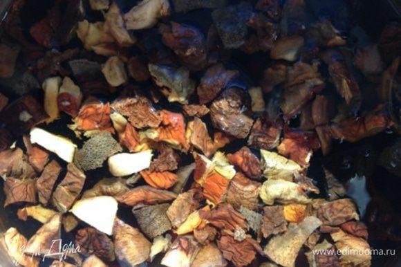 Сушеные грибы залить водой, дать набухнуть, отжать, промыть. Настой процедить. Грибы порубить, залить водой, в которой они замачивались.