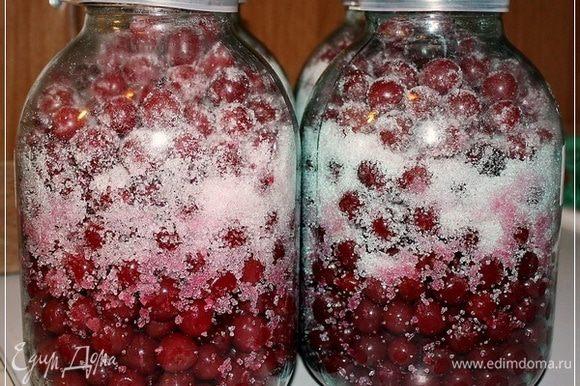 И засыпали в банки с ягодками. Есть мнение, что надо сахар оставить сверху. Он типа сам растворится и осядет. Но! Я пошел другим путем. Взял и перетряхнул, чтобы сахар перемешался с ягодками.