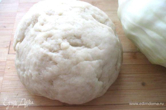 Замесить тесто в течении 10 минут. Чем лучше его вымешивать, тем лучше оно поднимется. Накрыть посуду с тестом полотенцем и поставить в теплое место на 1 час подходить.