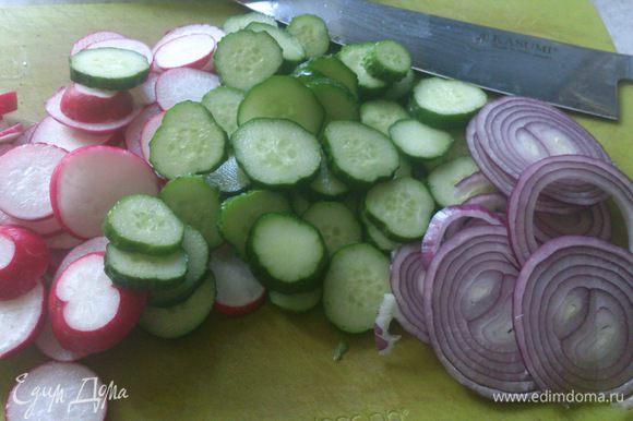Овощи помыть, обсушить и нарезать кружочками.