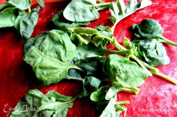 Для зелени использовала молодой шпинат и зелень редисочки!