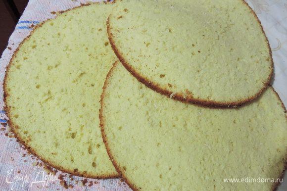Остывший бисквит разрезаем на три пласта.