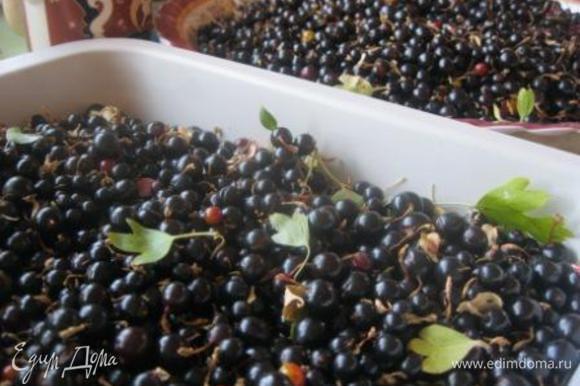 Ягоды перебрать, очистить от хвостиков и листьев.