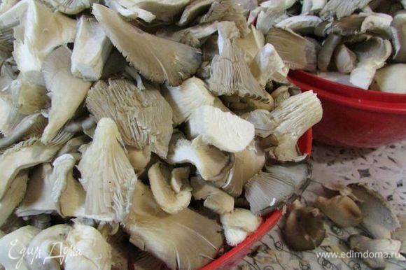 Грибы почистить, нарезать кусочками, только не мельчить. Отварить в подсоленной воде (когда вода закипит, добавить грибы и варить минут 5-7). Откинуть на дуршлаг, дать стечь лишней жидкости.