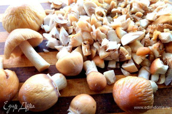 Измельчаем грибы.