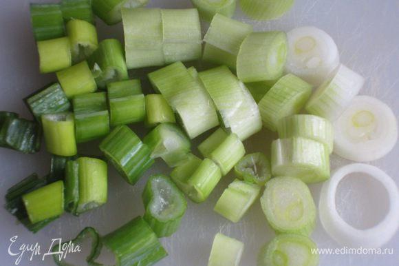 Зелёный лук нарезать кольцами.