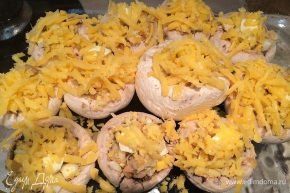 Каждую шляпку посыпать голландским сыром. Выпекать в заранее разогретой духовке при температуре 190 градусов 15-20 минут.