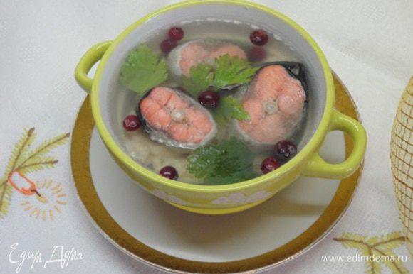 Желатин разведите в небольшом количестве воды (пример 1/2 стакана) и оставьте для набухания. Подготовьте формы для заливного. Аккуратно шумовкой достаньте кусочки рыбы из бульона и разложите в формы. Бульон процедите, верните в кастрюлю и добавьте набухший желатин и перемешайте до полного растворения. Залейте рыбу бульоном, разложите веточки зелени и клюкву. Остудите и переставьте в холодильник до полного застывания.