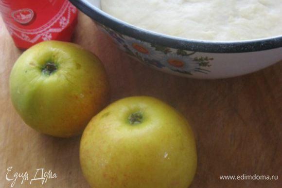Яблоки тщательно вымыть. Тесто я использовала свое любимое - http://www.edimdoma.ru/retsepty/69878-sdobnaya-bulka-s-izyumom.