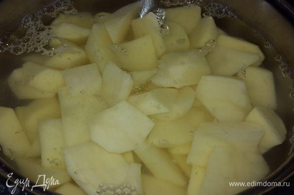 Картофель очистила, произвольно нарезала, залила водой, посолила и поставила варить.