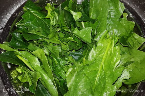"""Некрупный картофель тщательно моем щеткой и отвариваем """"в мундире"""", сливаем воду и даем остыть. Шпинат перебираем, отделяем листья от стеблей, тщательно моем и даем обсохнуть. Если нет свежего шпината, можно использовать замороженный."""