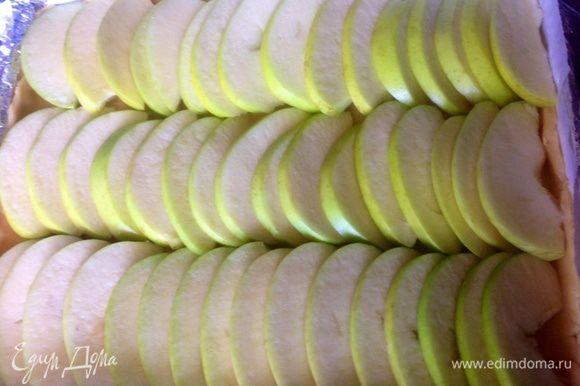Сверху пласта выкладываем яблоки.