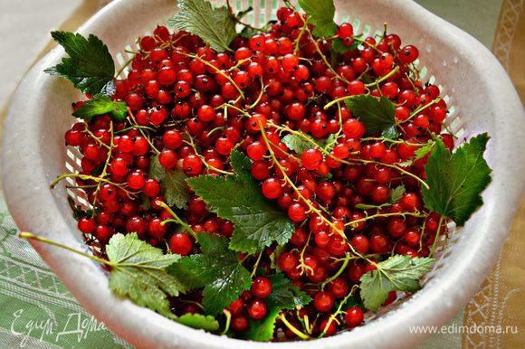Переберите ягоды смородины, очистив их от веточек, листьев и мусора. Помойте и дайте стёчь воде.