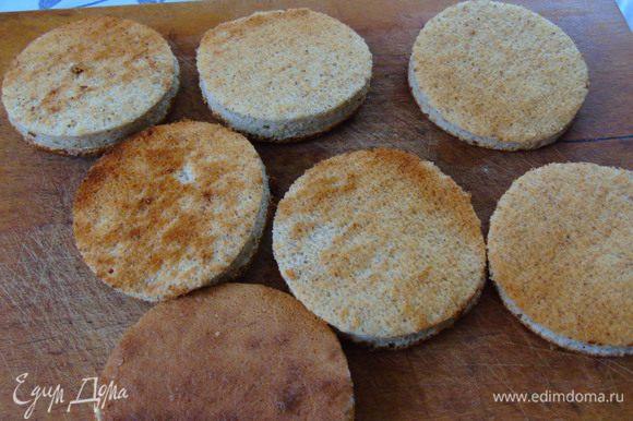 Готовому бисквиту дайте остыть, снимите бумагу и нарежьте кружками диаметром 6 или 8 см.