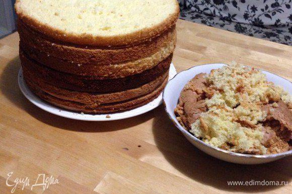 Затем разрезаю бисквит длинным ножом для хлеба (пилка) на необходимое количество пластов. Если необходимо, то срезаем верхушку немного. У меня было три бисквита и каждый я разрезала на две части, и получилось у меня два торта с тремя пластами.