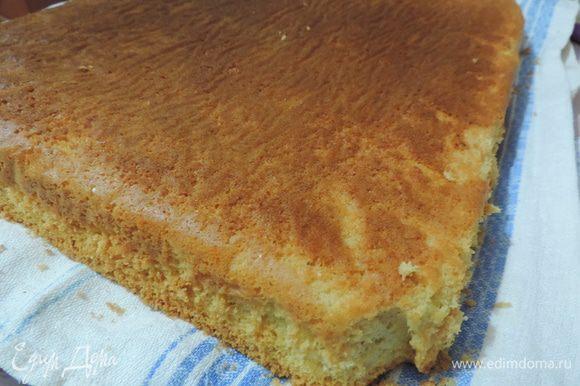 Бисквит готовим по рецепту http://www.edimdoma.ru/retsepty/67407-izumitelnyy-belyy-biskvit. Я выпекала его в форме 28х38 см. Можно выпечь два бисквита в форме 26 см.