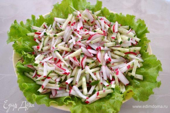 Начинаем собирать салат. На блюдо выкладываем листья салата, выкладываем огурцы и редис.