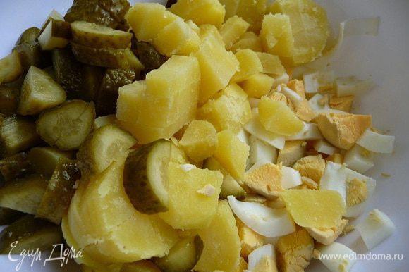 Яйца, картофель и маринованные огурцы порезать крупными кусочками.