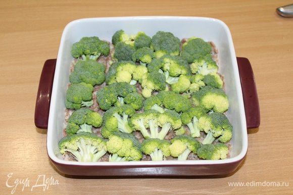 Теперь сверху выложите свежую брокколи, разобранную на соцветия.