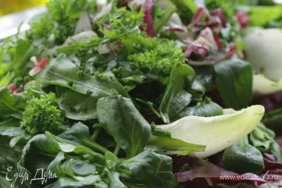 Все листья салата и петрушку выложить в салатницу и перемешать. Посыпать солью, перцем, еще раз перемешать и полить оливковым маслом.