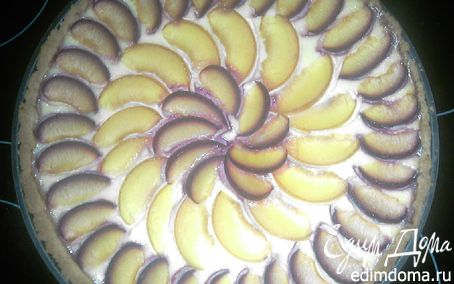 Рецепт Пирог творожный со сливами