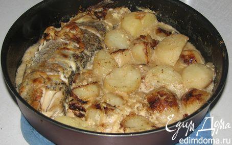 Рецепт Щука под сметаной с молодым картофелем