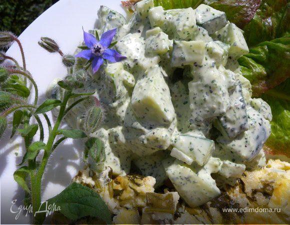 Йогуртовый соус с бараго к салату