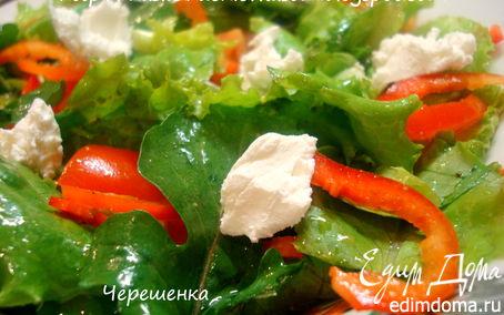 Рецепт Салат с козим сыром