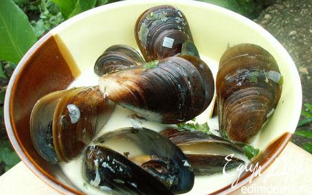 Рецепт мидии в сливочном соусе