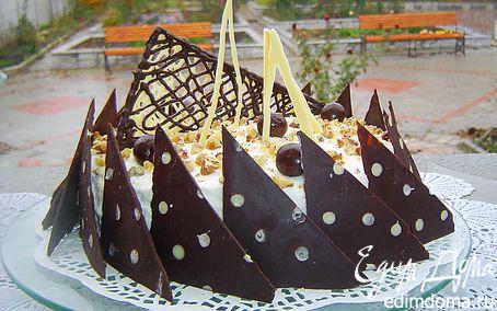 Рецепт Ореховый торт с кремом Патисьер