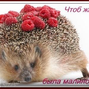 сладкоЁжка