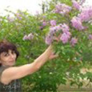 Марина Саркисова