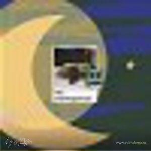 светлана лапина(лосакова)