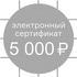 Сертификат в магазин бытовой техники