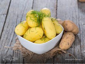Международный день варки картофеля