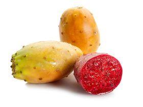 Опунция плоды