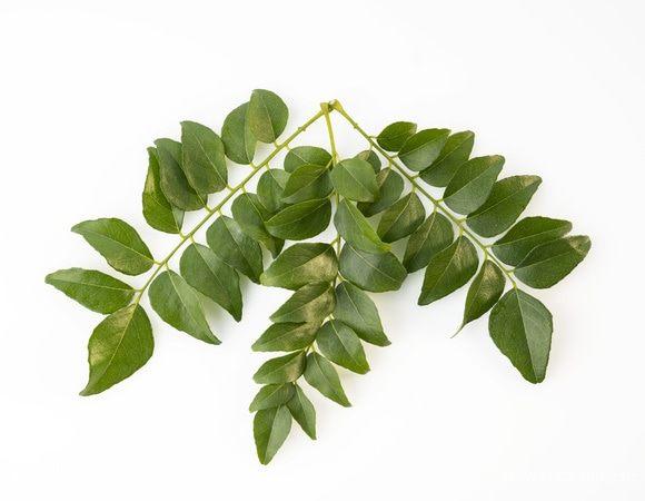 Карри листья