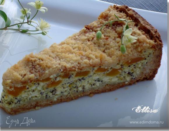 Пирог «Творожно-абрикосовая сочность»